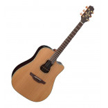 Takamine Garth Brooks GB-7C